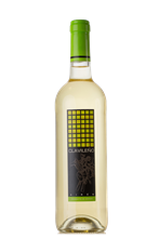 CLAVILEÑO - YOUNG WHITE WINE